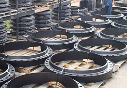 Industry Standard Flanges